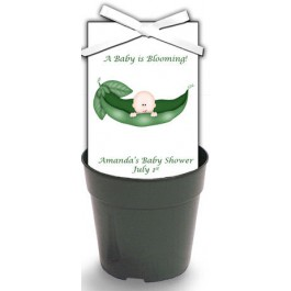 Personalized Pea in a Pod Baby Shower Wildflower Seeds & Flowerpot Set
