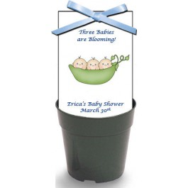 Triplets 3 Peas in a Pod Baby Shower Wildflower Seeds & Flowerpot Set