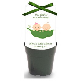 Personalized Twins 2 Peas in a Pod Baby Shower Wildflower Seeds & Flowerpot Set