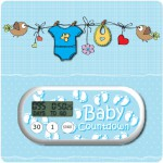 Baby Boy, Girl or Neutral Countdown Clock