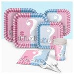 Gender Reveal Basic Party Pack