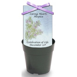 Personalized Sympathy Seed Packet with  Flower Pot