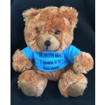 """Unlimited Hugs"" Comfort Bear with Tee Shirt Sympathy Gift"